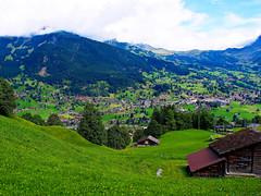 El verde que alegra el valle (Jesus_l) Tags: europa suiza grindelwald interlaken jungfrau cantndeberna jesusl