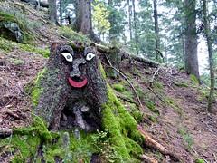 Black Forest: happy tree stump (romanboed) Tags: travel autumn trees black tree fall leaves forest germany landscape happy europe hiking foliage stump schwarzwald baiersbronn mitteltal