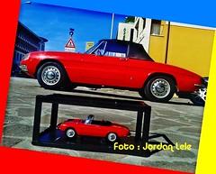 Alfa Romeo Duetto Vs Duetto Diecast 1:18 (MODEL CAR PASSION) Tags: auto red cars car rouge spider 2000 milano small mini 1600 di alfa romeo 1750 bone cabrio giulia coda capote cabriolet giulietta diecast seppia kyosho sz osso duetto autoart tronca biscione worldcars