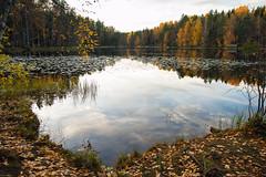 (Stelios Kirtselis) Tags: autumn lake reflection fall nature water canon suomi finland landscape raw wide maisema vesi nuuksio syksy lightroom luonto waterscape 1755 järvi 2013 järvimaisema canon1755 nuuksionationalpark luontokuvaus canon7d