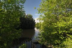 Rotherham Waterways 6