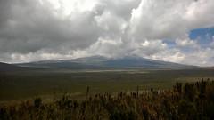 Kilimandjaro - Jour 3 - Shira 1 - 068