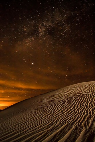 Starry Skies over the Dunes