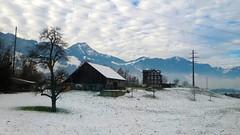 from the train window (* Patrcia *) Tags: trip travel winter white house mountain snow tree travelling switzerland sony trainwindow