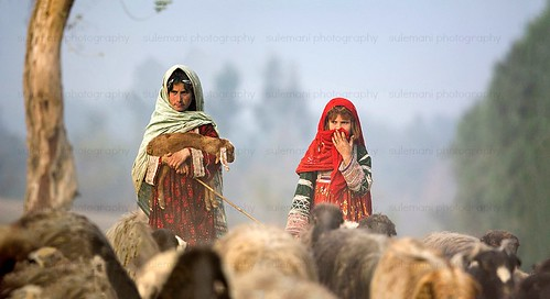 shepherds girl from baluchistan , pakistan