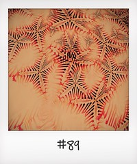 "#DailyPolaroid of 26-12-13 #89 • <a style=""font-size:0.8em;"" href=""http://www.flickr.com/photos/47939785@N05/11775845856/"" target=""_blank"">View on Flickr</a>"