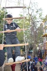 Rope ladder  (adventure camp)