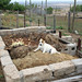 """chicken coop intervention • <a style=""""font-size:0.8em;"""" href=""""http://www.flickr.com/photos/52479745@N06/11963903164/"""" target=""""_blank"""">View on Flickr</a>"""