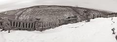 Coopers Rock Pan (TheReilDeal) Tags: winter blackandwhite panorama snow scenic westvirginia overlook coopersrock coopersrockstatepark