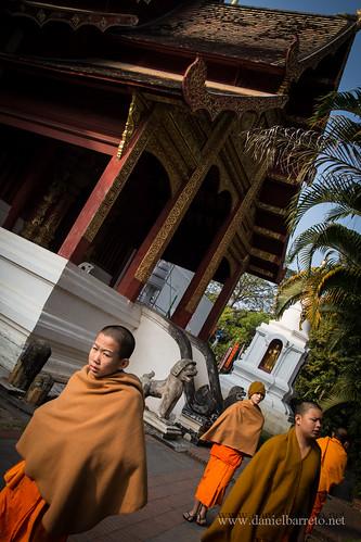 3531_Chiang_Mai