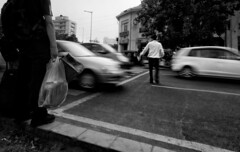 Why did the chicken crossed the road. (Rajneesh Panwar) Tags: road street new india chicken photography crossing place cross delhi rush zebra cp newdelhi connaught connaughtplace rajneesh