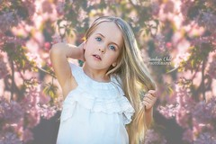 Spring (Sundays Child Photography) Tags: adelaidephotographer adelaidefamilyphotographer adelaide girl spring flowers blossoms white pink adelaidehillsphotographer