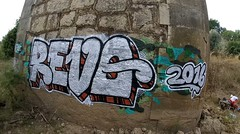 Camouflage (Writer Revo) Tags: graffiti underthebridge grafflifestyle allchrome camouflage
