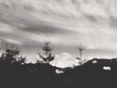 Tender Mountains (LiLauraLu) Tags: mountains alps bw blacknwhite sw blur blurryc blurry you inspiration artsy window dust dirt trees scratches tree nadelbaum tanne
