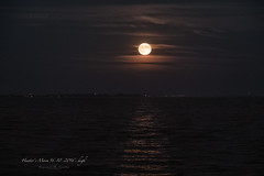 Hunters Moon 16-10-2016..high (Raymond K. Photography) Tags: fullmoon vollemaan supermoon supermaan netherlands holland thenetherlands dutch markermeer sonya7s a7s sony sonyepz18105mmf4goss sony18105mm 18105mm