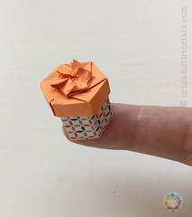 Origami Miniature Hexagonal Box (Judith Magen) Tags: origami box hexagonal tomokofuse