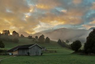 Adrian Vesa Photography