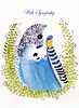 budgie design for a veterinarian practice that Im working for at the moment. (art by kim feint) Tags: budgie bird cute blue pretty watercolor ink