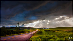 Before the Storm (Moe Ali Photography) Tags: weather alberta calgary storm clouds rays road light field grass farm overcast hail landscape moealiphotography outdoors nature canon5dii canon35mmf2 hdr blending dynamicrange rain