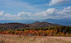A little closer to heaven... (Max Patch- Hot Springs, NC) (knoxnc) Tags: bluesky trees bald nikon maxpatch browngrasses mountainrange appalachiantrail mountains appalachianmountains sunlight outside fall d7200 clouds