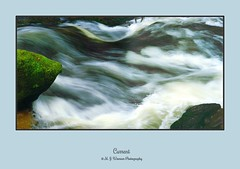 Current (M.J.Woerner) Tags: nature forest forestry outdoor wood badenbaden blackforest stream torrent river flow moss