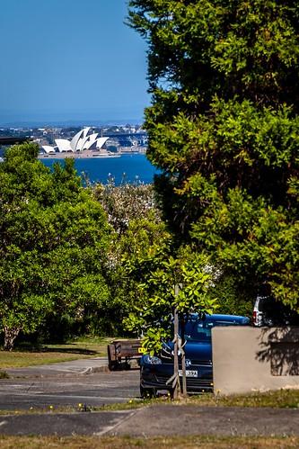 Sydney Views-2