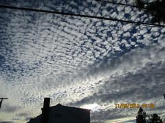 IMG_1029 (StormJunkie2015) Tags: clouds sky weather skies altocumulus cumulus alto meteorology