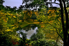 Fall in Twickel (Nils van Rooijen) Tags: twickel kasteel castle autumn colors coours park forest romantic pond water trees fall yellow landscape netherlands holland twente plants indian summer