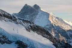 Fiescher Gabelhorn ( VS - 3`876m ) - Gross Wannenhorn ( VS - 3`905m ) - Chamm - Kamm (VS - 3`866m) in den Walliser Alpen - Alps im Kanton Wallis - Valais der Schweiz (chrchr_75) Tags: albumzzz201612dezember christoph hurni chriguhurni chrchr75 chriguhurnibluemailch dezember 2016 grosser aletschgletscher gletscher glacier ghiacciaio  gletsjer kantonwallis kantonvalais wallis valais albumgletscherimkantonwallis alpen alps schweiz suisse switzerland svizzera suissa swiss