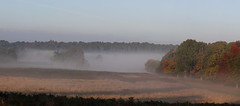 Richmond Park. (richard.mcmanus.) Tags: richmondpark london mist autumn trees uk england autumnwatch landscape gettyimages