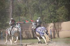IMG_4808 - Copy (joyannmadd) Tags: horse rider joust spar duel warhorse hammoind louisiana armour outdoor game war combat midevil larenfest