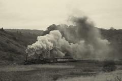 Raising standards (feroequineologist) Tags: 76084 76038 76079 railway train steam northyorkshiremoorsrailway nymr