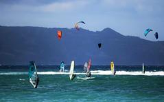 Wind surfers (joybidge) Tags: trishcanada naturepatternscanada mauihawaii windsurfers