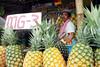 I've Got a Pineapple-Pen (jeromebonto) Tags: polomolok southcotabato philippines pineapple friendlysmile fruitstand fruitvendor mindanao socsargen pilipinas