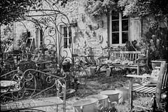 le jardin DxOFP+AEP  LM+501002688 (mich53 - thank you for your comments and 3M views!) Tags: bricetbroc brocante antiquits vieilleschoses tlmtre curiosits lapin bouddha banc chaises fer statues dcorations zing seaux tables anciens vintage t fentre ange bricandbroc flea market antiquities oldthings rangefinder curiosities rabbit buddha bench chairs iron decorations buckets old summer window angel leicamtype240 summiluxm11450asph normandie normandy france 2016 vacances holidays monochrome noirblanc bw curios