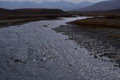 MAQ_0419 (MolviDSLR) Tags: deosair national park skardu gilgit baltistan northern areas pakistan brown bear wild life scenery landscape