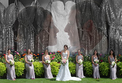 2016 Weddings (Michael L Coyer) Tags: weddings weddingceremony bride groom kiss firstkiss reception bridalparty bridesmaids banquet bouquet