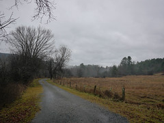 Currently (grongar) Tags: rain ice trail field tree valley thetford vermont november
