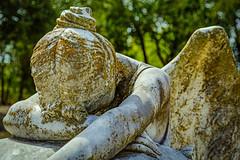 Angel of Grief (Davila) (Mike Schaffner) Tags: angel angelofgrief burialground cemetery davila grave gravestone graveyard grief holycross memorial monument sculpture sorrow statue tombstone weeping waco texas unitedstates us