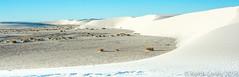 White Stuff   New Mexico (keithhull) Tags: whitesandsnationalmonument whitesands alamogordo newmexico landscape unitedstates 2016