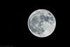 Luna (beppeverge) Tags: beppeverge luna moon superluna