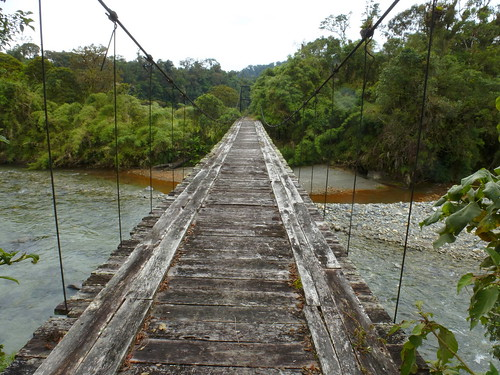 Bridge over Rio Cosanga