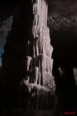 Il cero (Sigma SD1, Foveon) (BeSigma) Tags: parco sigma natura slovenia viaggio vacanza grotte merrill foveon cascate postojna sd1