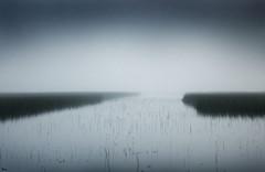 morning (TeRo.A) Tags: morning lake landscape järvi aamu kaislikko natureasabstract abedofreeds