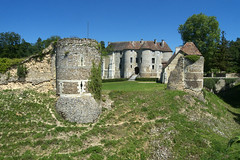 Harcourt, chteau (Ytierny) Tags: france horizontal architecture pierre arboretum ruine normandie fortification arbre chteau parc silex militaire harcourt eure dfense bourg plaine vestige neubourg enceintefortifie ytierny