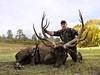 New Mexico Elk Hunt 60