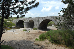 Pont du Tarn