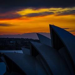 A zoom shot from Saturday... (here_downunder) Tags: uploaded:by=flickstagram instagram:photo=57846459184759182813033554 instagram:venuename=sydneyoperahouse instagram:venue=2112249 operahouse tpo721013 sydney australia