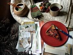 Novembertagssofa (LaWendeltreppe) Tags: home wool cake scraps organicfood