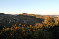 Arbustes illuminés (Chemose) Tags: autumn automne burgundy bourgogne vignoble vigne vinyard solutré vergisson mâconnais
